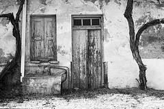 f80_119_13 (Ghostwriter D.) Tags: kreta crete 2018 nikonf80 blackandwhite blackwhite analog film greece agiosioannis