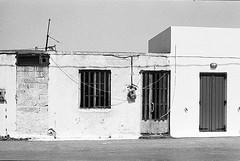 f80_119_11 (Ghostwriter D.) Tags: kreta crete 2018 nikonf80 blackandwhite blackwhite analog film greece