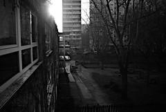 Berlin, Am Berl - Gegenlicht (tom-schulz) Tags: ricoh grii monochrom bw sw berlin thomasschulz sonne licht schatten gegenlicht hof fenster hochhaus treppe wendeltreppe