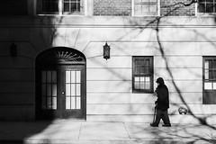 Man with Cane (Kenneth Laurence Neal) Tags: newyorkcity cities citylife cityscenes urban street streetphotography shadows contrast blackandwhite blackdiamond monochrome monotone nikon nikond7100 buildings absoluteblackandwhite