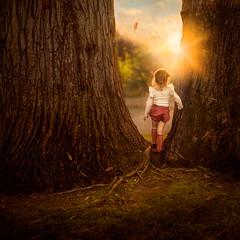 My Sunshine ({jessica drossin}) Tags: jessicadrossin portrait naturallight child girl toddler ruffle light flare wwwjessicadrossincom childhood faceless orange grass leaf