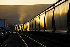 Westward Potash (Patrick Dirden) Tags: ge generalelectric locomotive diesel engine exhaust glint sunset dusk rail railroad train freighttrain cargo up unionpacific unionpacificrailroad upportlandsubdivision thedallesor wascocounty columbiarivergorge oregon pacificnorthwest northwest pnw