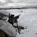 A U.S. Marine fires an M240B machine gun on a live fire range