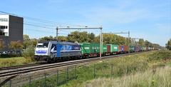 2018-10-12_8223 RTB Cargo 186 426 (Rotterdam) Dordrecht - Zuid (Peter Boot) Tags: cargo goederentrein goederenvervoer nederland spoor spoorwegen train trein rtbcargo186426 dordrechtzuid rtbcargo rtbc rtb rtb186426 rtbc186426 186426 container containertrein eloc traxx bombardier railpool rpool traxxf140ms weilamrheinshuttle