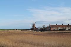 Cley-next-the-Sea Windmill 270120 (return2layerroad) Tags: cleynextthesea windmill marshes reedbeds riverglaven norfolk
