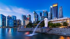 Merlion Park (bleeyw) Tags: merlionpark laowa9mmf28zerod singaporecity singapore singaporecityscape cityscape venusoptics
