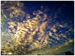 Empujadas por la claridad / Pushed for clarity (Claudio Andrés García) Tags: nubes clouds cielo sky skyscape amanecer sunrise verano summer naturaleza nature santiagochile fotografía photography shot picture smartphone cellphone flickr naturewatcher