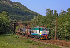 FS E655 199 (maurizio messa) Tags: nikond90 cargo caimano e655 piemonte mau bahn ferrovia freighttrain fret treni trains railway railroad guterzuge