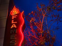 flames (pbo31) Tags: sanjose california downtown city urban southbay santaclaracounty bayarea siliconvalley january 2020 boury pbo31 julie nikon d810 color neon sign bluehour red night dark