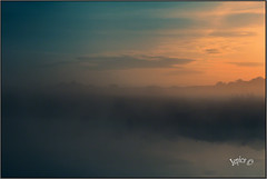 Morning Blue. (Picture post.) Tags: landscape nature green sunrise water mist goldenhour clouds trees paysage arbre brume reflections bluesky