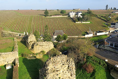 Vineyards facing the Royal fortress of Chinon [Explore30/01/2020] (Sokleine) Tags: chinon touraine indreetloire 37 castle château heritage monument patrimoine france frenchheritage centrevaldeloire