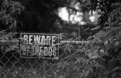 Stay Away! (PositiveAboutNegatives) Tags: leica slr leicaflex leicaflexsl 50mm 50mmsummicron leicar film analog bw blackandwhitefilm foma fomapan fomapan100 hc110 vuescan sign signage
