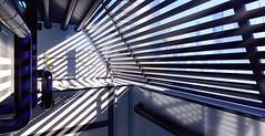 """The Central Lines"" (HodgeDogs) Tags: openworld people larahjohnson shadows mirrorsedgecatalyst mirrorsedge nvidia pc games gaming ea dice explore inexplore"
