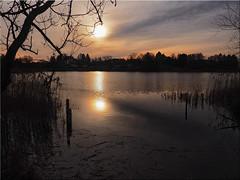 Winter day at the lake (Ostseetroll) Tags: deu deutschland geo:lat=5404264460 geo:lon=1070165515 geotagged gronenberg scharbeutz schleswigholstein see lake spiegelungen reflections sonne sun winter olympus em5markii
