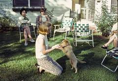 Found Kodachrome Slide (Thomas Hawk) Tags: analog kodachrome vintage dog found foundphoto foundslide pennsylvania unitedstates unitedstatesofamerica america puppy fav10 fav25