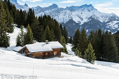 Hillside Chalet. (Tony Brierton) Tags: 23120 alps mountains resort ski snow specialolympics switzerland villarssurollon