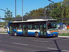 Irisbus Citelis 12 - Multiplicity 229 (Pi Eye) Tags: irisbus iveco citelis citelis12 luxembourg avl vdl multiplicity rtgr letzebuerg bus