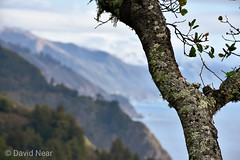 The Big Sur coastline (davidjnear) Tags: bigsur monterey california coast coastline nature mountains ocean sea trees bokeh landscape photography nikon d3400