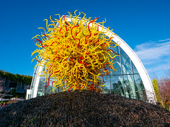 The Sun, Chihuly Garden and Glass exhibit in the Seattle Center