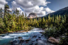 Wapta Mountain in Yoho National Park