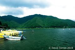 Fujikawaguchiko - Lake Shōji (CATDvd) Tags: nikond7500 日本国 日本 stateofjapan nippon niponkoku nihonkoku nihon japón japó japan estatdeljapó estadodeljapón catdvd davidcomas httpwwwdavidcomasnet httpwwwflickrcomphotoscatdvd july2019 landscape paisaje paisatge bosc bosque forest lago lake llac montaña mountain muntanya cincllacsdelfuji cincolagosdelfuji fujifivelakes fujigoko fujikawaguchiko fujikawaguchikomachi 富士河口湖町 富士五湖 prefecturadeyamanashi yamanashiprefecture yamanashiken 山梨県 llacshōji lakeshōji lagoshōji 精進湖 shōjiko
