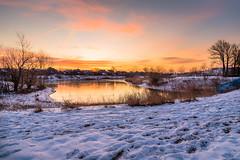 Winter Morn (Neil Cornwall) Tags: 2020 blueheronpark canada january ontario windsor sunrise winter