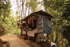 Jungle Shopping - Munduk - Bali (Nicoladune) Tags: canon 80d munduk bali indonesia shop shopping jungle nature voyage travel sigma 1020mm
