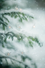 snow (olli_loo) Tags: snow snowtime light tinylights nature naturephoto natural manual manuallens manualfocus magicforest magic softlens softbokeh softness softfocus sovietlens winter wintertime winterdecor winterforest decor decoration decorinspiration depthoffield dof outdoor outdoordecor forest forestmagic 85mm helios40 helios russianlens russianwinter spruce picswithsoul littlestories holidaylights