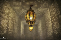 Light Reflections & Geometries (pbmultimedia5) Tags: light lamp ceiling palace entrance hall amer fort india geometries pbmultimedia reflections amber rajasthan
