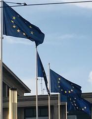 💙💙💙 Ailymunwn â'r UE / Let's rejoin the EU / Fillimis ar an Aontas Eorpach 💙 💙💙 (Rhisiart Hincks) Tags: hunanniwed selfharm politics gwleidyddiaeth blue glas flags brataich baneri ue eu letsrejointheeuropeancommunity ailymunwnârundebewropeaidd téimisaraissanaontaseorpach brexit brexshit