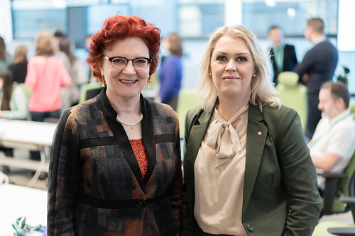 Visit of Swedish Minister for Health and Social Affairs