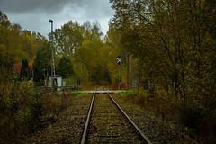 Stillgelegte Bahnstrecke  (2) (berndtolksdorf1) Tags: deutschland thüringen landschaft landscape bahnstrecke jahreszeit herbst autumn gleise bäume sträucher laubfärbung outdoor
