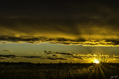 Prairie Sunset in Gold (J K German) Tags: sunset oklahoma golden clouds horizion nature backwoods country sun fence backroad