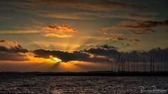 Sunset Grevelingen (BraCom (Bram)) Tags: 169 bracom bramvanbroekhoven goereeoverflakkee grevelingen herkingen holland nederland netherlands southholland zuidholland avond cloud evening masten masts silhouetten silhouettes sky sunrays sunset water widescreen wolk zonnestralen zonsondergang