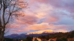Mont Canigou (Isabelle****) Tags: montagne mountain canigou neige snow nuages clouds céret pyrénéesorientales france matin morning douceur sweet