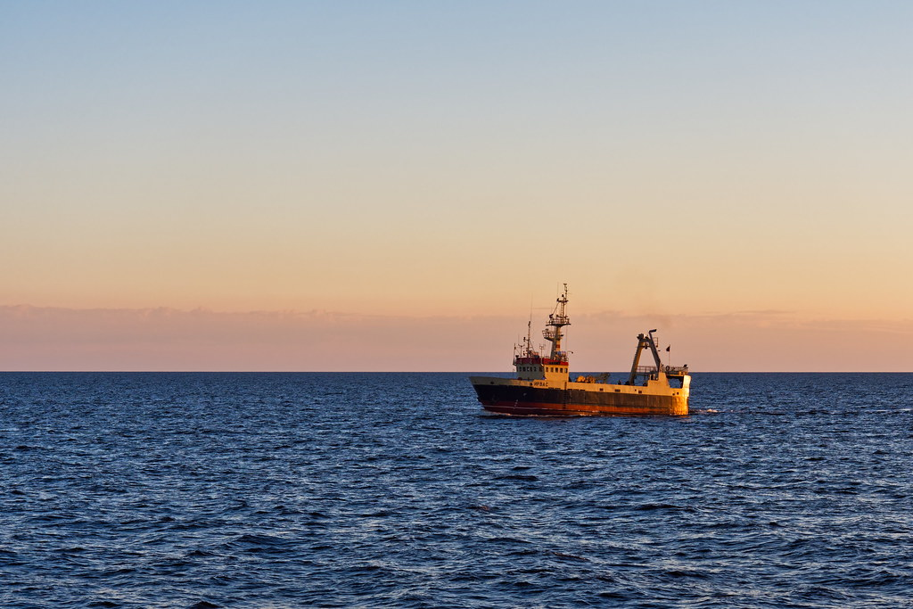 фото: White Sea
