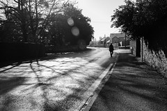 21/366 - Bristol Hill (Spannarama) Tags: 366 january blackandwhite lightandshadows sunlight sunshine shadows man walking crossingtheroad flare road pavement bristolhill wells somerset uk trees