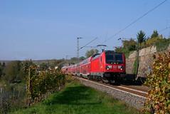 Noch alltäglich... (Nick-M.) Tags: db deutsche bahn lauffen neckar rb regionalbahn br 147 zug eisenbahn