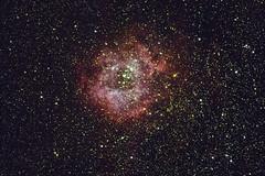 Rosette (federicojakimowicz) Tags: astro pentax cordoba deepspace astrometrydotnet:id=nova3913539 astrometrydotnet:status=solved