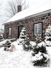 ... (Jean S..) Tags: white trees stairs winter snow old stone outdoors religion church
