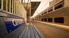 Karlingford's Ks (Behnam Emery) Tags: sydney trains carlo t6 carlingford line k set ridgy