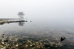 A lot of fog this winter (Mariannevanderwesten) Tags: fog mist zeeland water rocks stenen nature natuur nikon