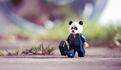 To Work ......... (DeanoNC) Tags: minifigure panda bonniebears smileonsaturday