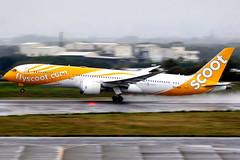Scoot | Boeing 787-9 | 9V-OJA | Taipei Taoyuan (Dennis HKG) Tags: aircraft airplane airport plane planespotting canon 7d 100400 taipei taiwan taoyuan rctp tpe scoot tgw tr 9voja boeing 787 7879 boeing787 boeing7879 dreamliner