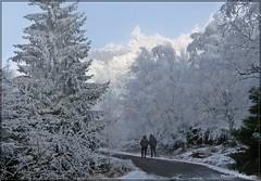 Auf dem Weg ins Himmelreich (Christoph Bieberstein) Tags: tschechien tschechische republik böhmen hoher schneeberg czech republic bohemia erzgebirge elbsandsteingebirge böhmische schweiz bohemian switzerland čechy česko ceská republika české švýcarsko labské pískovce děčínský sněžník raureif eis ice zima januar 2020 january
