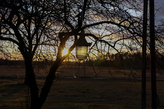 Cold lamp (JaaniicB) Tags: canon eos sigma 1835mm f18 winter countryside cold lamp sun sunset sunlight latvia latvija 77d