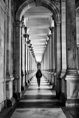 Colonnade (josebrito21) Tags: streetphotography blackwhite bw blackandwhite colonnade architecture karlovyvary millcolonnade czechrepublic europe josebrito2 josébrito josébritophotography josébritofotografia josébritofotos josébritophotos black white