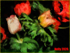 *FEBRUARY* (MONKEY50) Tags: art digital colors anemones nature plant psp pentaxart flowers petals macro flickraward musictomyeyes exoticimage netartii artdigital hypothetical autofocus contactgroups awardtree pentaxflickraward