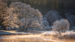 a winters glow (akh1981) Tags: reflections riverbrathay amateurphotography beautiful benro cumbria countryside calm nikon nisi nisifilters nationalpark nature nationalheritage nationaltrust nationalheritagesite morning mist fells fog frost frozen travel trees tranquil tamron ice landscape walking water winter uk unesco outdoors sunrise