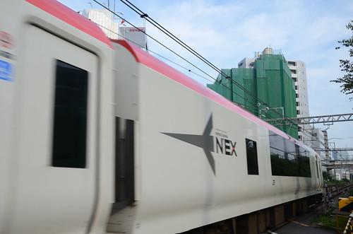 Narita Express E259 Series Train at Aoyama-kaido Crossing in 2018 June: 8